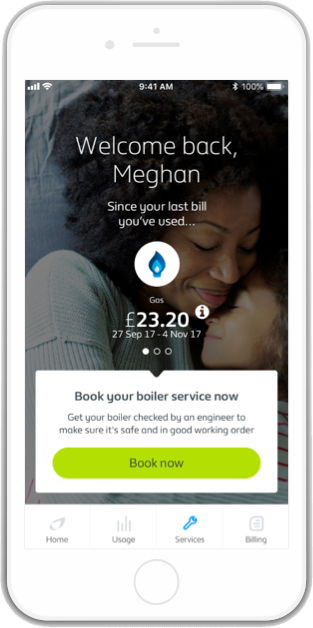 Home & Boiler Cover Home Services British Gas